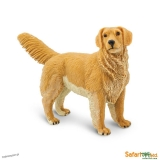 Pies Golden Retriever